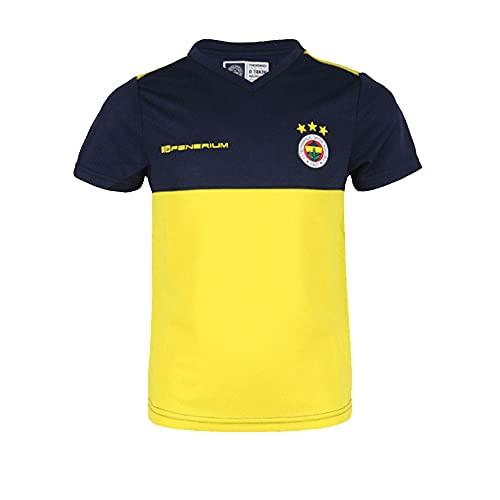 FB Fenerbahce Kinder Tshirt/Fenerium original lizensiert (4-6 Jahre)