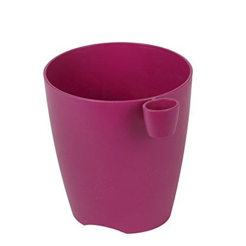 Violet Pot 1,3 l Pot à Herbes Aromatiques Herbes Pot Pot scherenhalterung