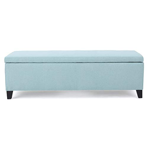 Christopher Knight Home Cleo Fabric Storage Ottoman, Light Blue