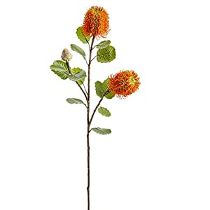 28″ Banksia Protea Silk Flower Stem -Orange (Pack of 12)