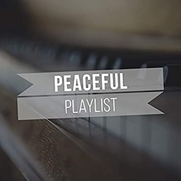 Peaceful Study Playlist