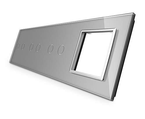 Livolo - Panel de cristal para 4 enchufes VL-C7-C2/C2/C2/SR-15, color gris, táctil, marco de cristal, para enchufes, interruptor táctil de luz e interruptor de serie