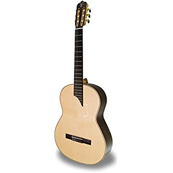 APC luthier MX- Guitarra clásica (funda incluida): Amazon.es ...