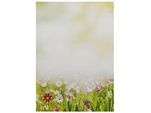 Briefpapier   Sommerwiese   20 Blatt Blumen Motivpapier DIN A4
