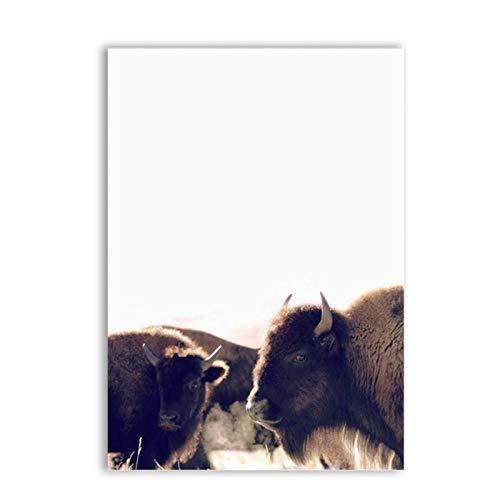Mulmf Canvas Art Schilderen en Poster Bison Dieren Canvas Prints Fotobehang Highland Koe Fotografie Prints Home Decor- 50X70Cm Unframed