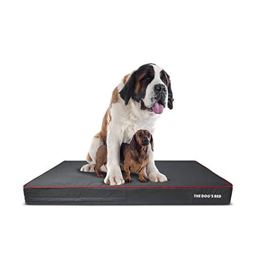The Dog's Bed Orthopädisches Hundebett, XXXL, Grau/Rot, 162 x 111 cm, wasserdicht, Memory-Schaumstoff