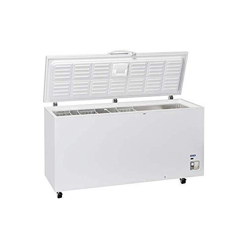 Bahut Professional - congelador (600 L)