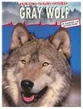 Gray Wolf: 0 (Animals Under Threat)