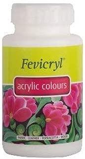 Pidilite Fevicryl Acrylic Colour (500 Ml): White