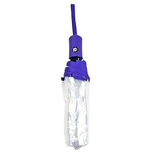 Demarkt Mini Regenschirm Transparent Automatik, Taschenschirm transparent Auf-zu-automatik 8 Rippen, stabil und faltbar für Damen Mädchen