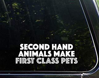 Tweede Hand Dieren maken Eerste Klasse Huisdieren (8-3/4