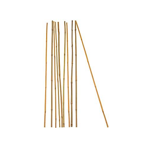 10x Pflanzstab Bambusstab 90 cm x 6-8 mm Bambus Rankhilfe Pflanzstab Tonkinstab 100% Naturprodukt Pflanzstäbe Bambusstäbe Bambusstangen