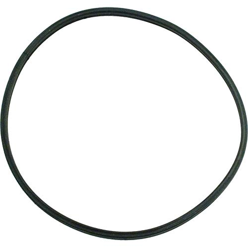 O-Ring Parker Replacement Pool and Spa Pump - Pentair U9-376