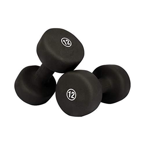 Pesas Pesos de la mano de neopreno con ponderaciones de mancuernas de agarre antideslizante establecidas, fáciles de leer pesos de mano E for el entrenamiento de fuerza Musculación ( Peso : 12lb×2 )
