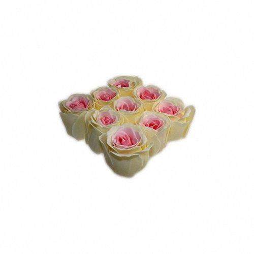 Bath Roses - 9 Roses in Gift Box Peach