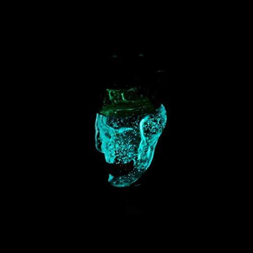 Molassefänger THE DEAD KING WOODOO von THE HOOKAH XXL Totenkopf SKULL SCHÄDEL Vorkühler   Aus Glas für 18/8 Schliff für eine saubere Shisha/Wasserpfeife