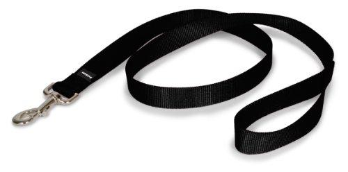 PetSafe Nylon Leash, 1' x 4', Black