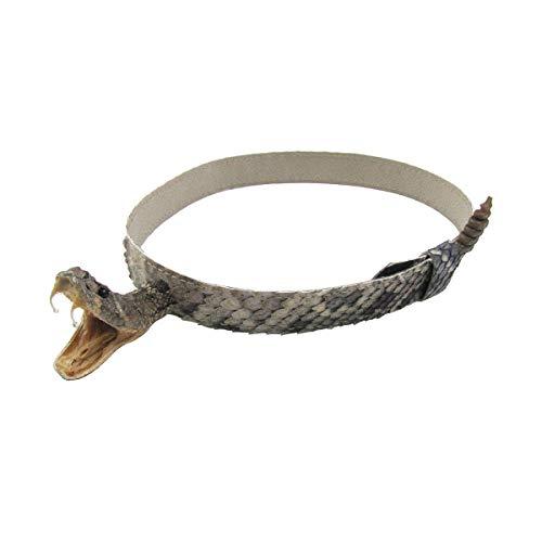 Treasure Gurus Eastern Diamondback Rattlesnake Western Cowboy Hat Band Genuine Head Rattle Snakeskin Real Taxidermy