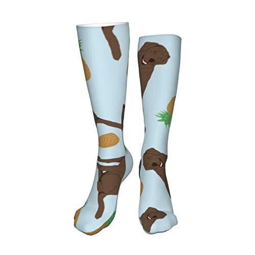 Chocolate Labrador Retrievers – Piñas Hombres Mujeres Adolescentes Niña Calcetines Deportivos Deportivos - 50cm
