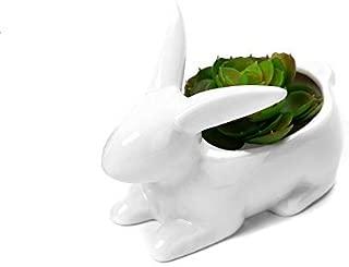 Gift Prod 1 Pcs Rabbit Pots Ceramic Succulent Planter Pots/Mini Flower Plant Containers Cute Animal Shaped Cartoon Planter Pots Plant Window Boxes (Style 8)