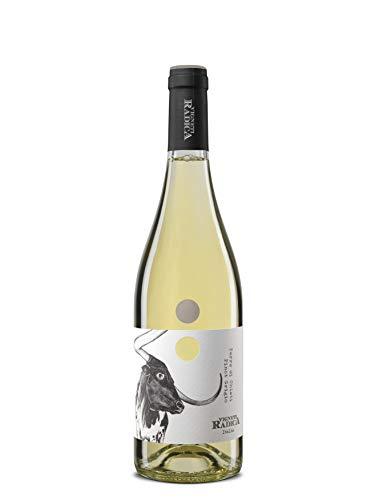 Vigneti Radica Pinot Grigio Igt Terre Di Chieti Vino Bianco - 750 ml