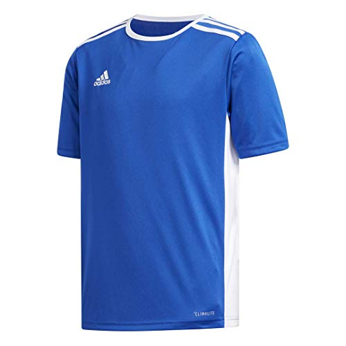adidas Boys' Entrada 18 Jersey, Bold Blue/White, Medium