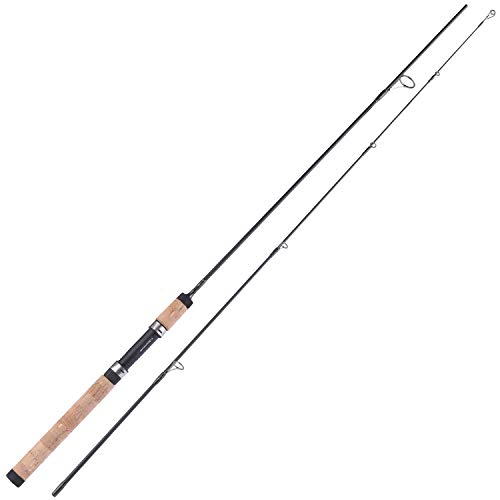Top 10 best selling list for 8 foot medium spinning rod