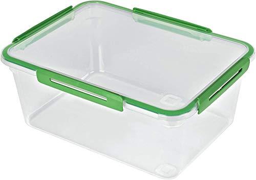 Rotho Memory grosse Frischhaltedose 5l mit Deckel, Kunststoff (PP) BPA-frei, transparent/grün, 5l (29,0 x 22,0 x 12,1 cm)