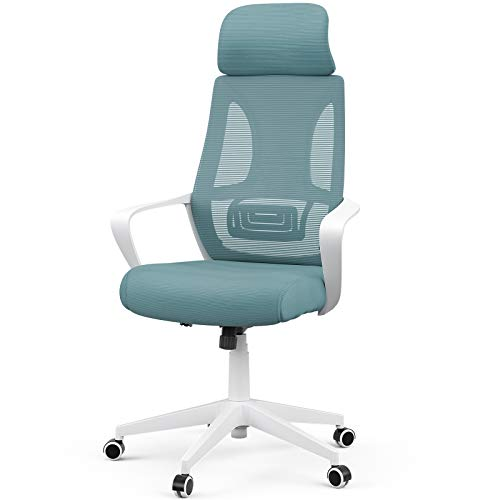 Mecor High-Back Home Office Chair Ergonomic Desk Chair Mesh Computer Chair Modern Design Executive Chair with Lumbar Support Armrest Rolling Swivel Height Adjustable(White/Blue)