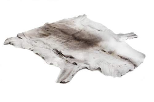 FINNWERK Rentierfell, Premium Qualität (aus Finnland, ca. 120cm x 90cm, Naturprodukt, echtes Fell)