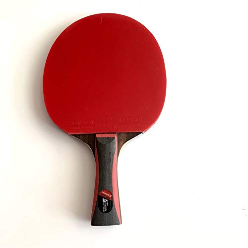 Lowest Price! NOLOGO SDSF Professional Carbon Fiber Table Tennis Racket with Double face pimples-in ...
