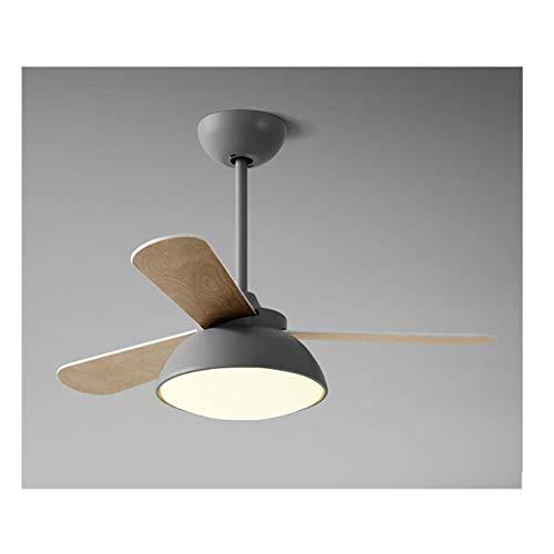 MYBA Ventilador de techo de Stumm, ventilador interior con luz LED y mando a distancia, 36 pulgadas, para dormitorio, salón, habitación infantil, ventilador de techo (color: gris, tamaño: 36 pulgadas)