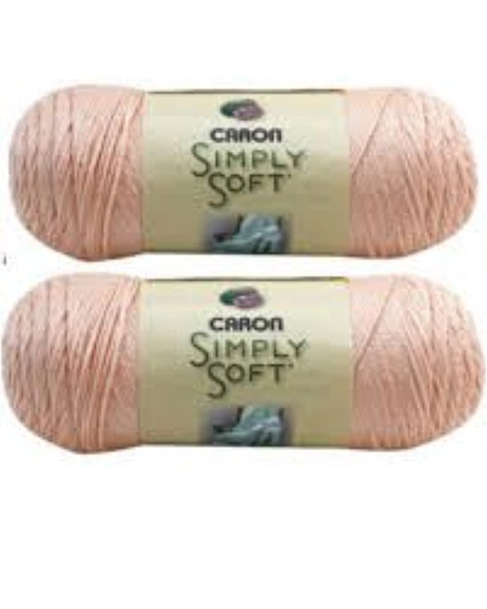 Bulk Buy: Caron Simply Soft Yarn Solids (2-pack) (Light Country Peach)