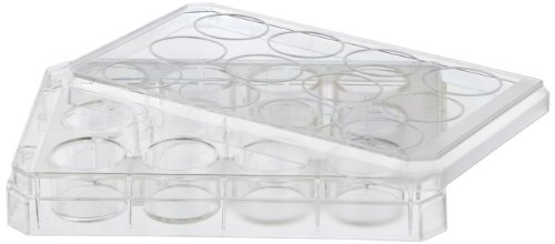 Nunc Microdish Hydrocell-Oberfläche, 12 Mulden, 6 Stück