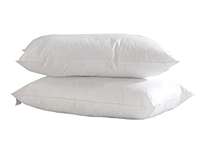 Lancashire Textiles So Soft Egyptian Cotton Cover Anti-Allergy Bounce Back Pillow Pair
