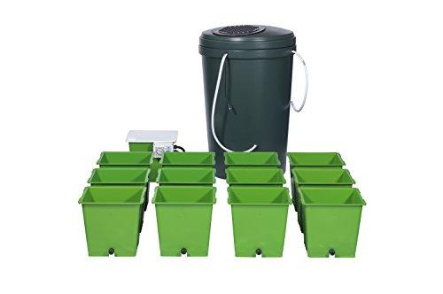 The Green Man System - Kit de Cultivo hidropónico para 12 ollas, para inundar y drenar