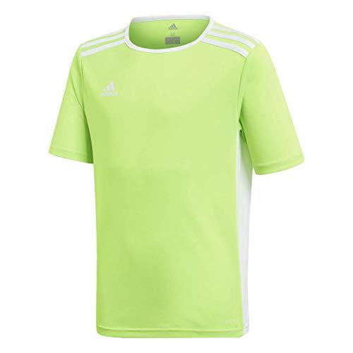 adidas Boys' Entrada 18 Jersey, Solar Green/White, Large