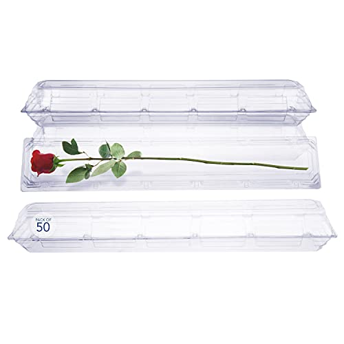 50 Pack Clear Plastic Flower Box for Corsage, Boutonniere, Rose, Orchid Prom Wedding Craft Container 30x5x4