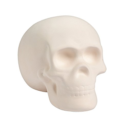 Do It Yourself Ceramic Skull - Crafts for Kids and Fun Home Activities