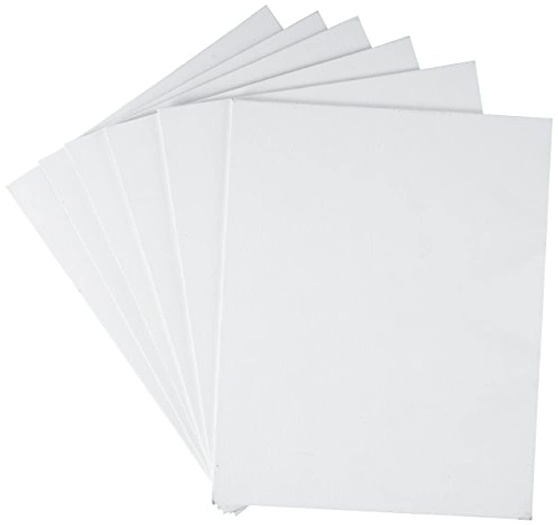 Canvas Panel 8X10 Pack of 6