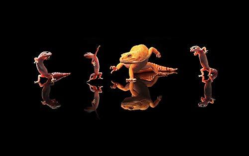 Lsping Puzzle 1000 Reptiles lagartos Animal 50x70cm
