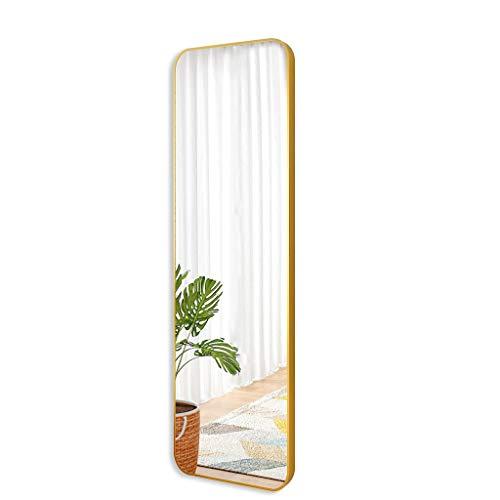 ESPEJOS de vestidor Colgante de Pared de Hierro Forjado Sala de Montaje Cuerpo Entero montado en la Pared Pared de baño (Color : Silver, Size : 40 * 120cm)