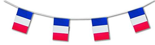 Guirlande 'France' - 10 m