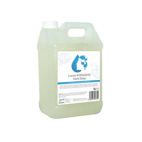 2 W03975 5 l antibatterico lavaggio a mano, confezione da 1
