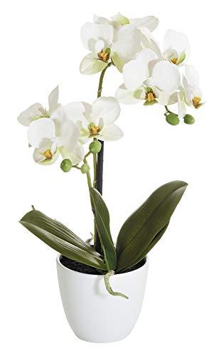 mucplants Orchidee Real Touch weiß 40cm im weißen Topf Kunstblumen Kunstpflanzen künstliche Orchidee