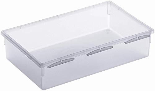 Rotho Basic modulare Ordnungsbox 23 x 15 cm für Schubladen, Kunststoff (PP) BPA-frei, transparent, (23,0 x 15,0 x 5,0 cm)
