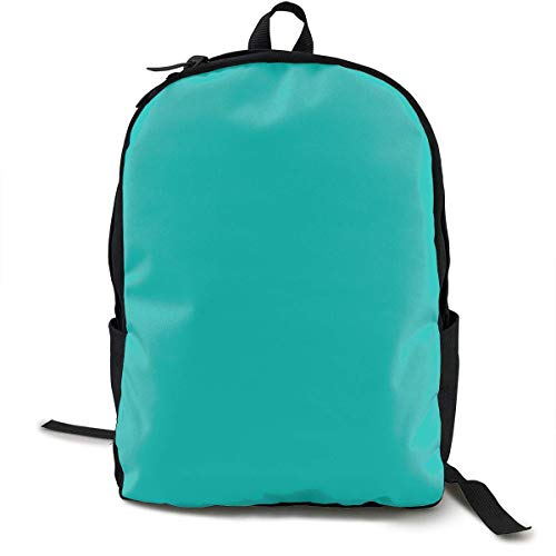 Classic Backpack,Tiff Blue Solid Casual School Bag Large Capacity Novelty Laptop Bag for Teens Women Men Travel Hiking