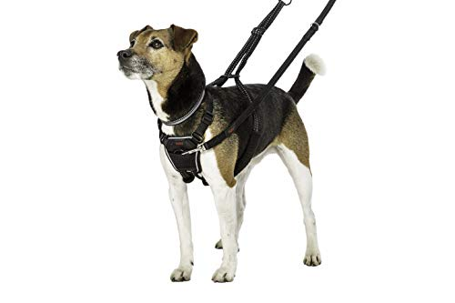 Halti No-Pull Harness, Small