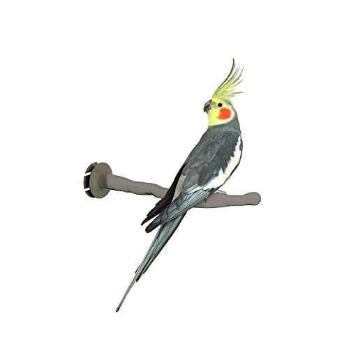 """K&H PET PRODUCTS Thermo-Perch Heated Bird Perch Regular Finish, Gray, Small/1"""" x 10.5"""", FFP Packaged Thermo-Perch"""