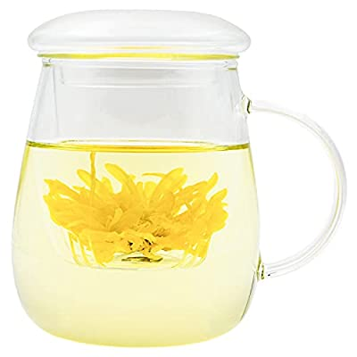 18oz Glass Tea Cup with Lid and Infuser Basket,550ml Infuser Clear Tea Mug,Perfect Borosilicate Glass Tea Infuser Cup for Office and Home Uses Loose Leaf Tea Steeping,Glass Teapots